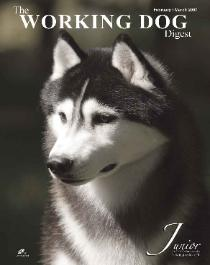 JR featured on the Feb 2007 cover of Working Dog Digest