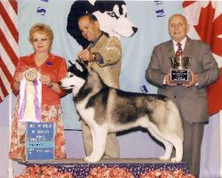 JR - BISS at Seneca Siberian Husky Club - Batavia NY, May 2006