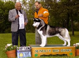 Grp 4th - Olean Kennel Club, NY May 2006 - Mr. Marsmen